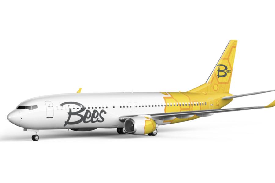 Авиакомпания Bees